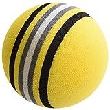 ゴルフ 練習 ボール 100球 セット 黄色【室内練習等】