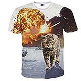 1911NC メンズ 3D 春 夏 ストリート 原宿系 デザイン サマー モード 動物 t-shirt プリント ヒップホップ おもしろ おしゃれ ファッション ロック スタイル 戦火の中の猫柄Tシャツ 半袖