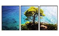 アルミ合金フレーム 印刷する絵画 家の壁の装飾画 クリスタル磁器装飾画 額装絵画(30x42cmx3枚 ブラックフレーム) 青い海、樹木、崖