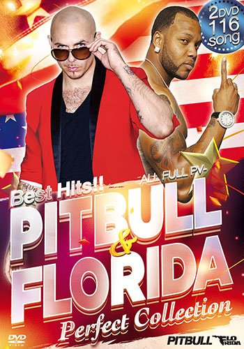 BEST HITS!! PITBULL & FLO RIDA ~Perfect Collection~