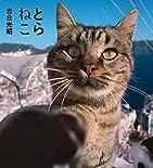 とらねこ(IWAGO'S BOOK)