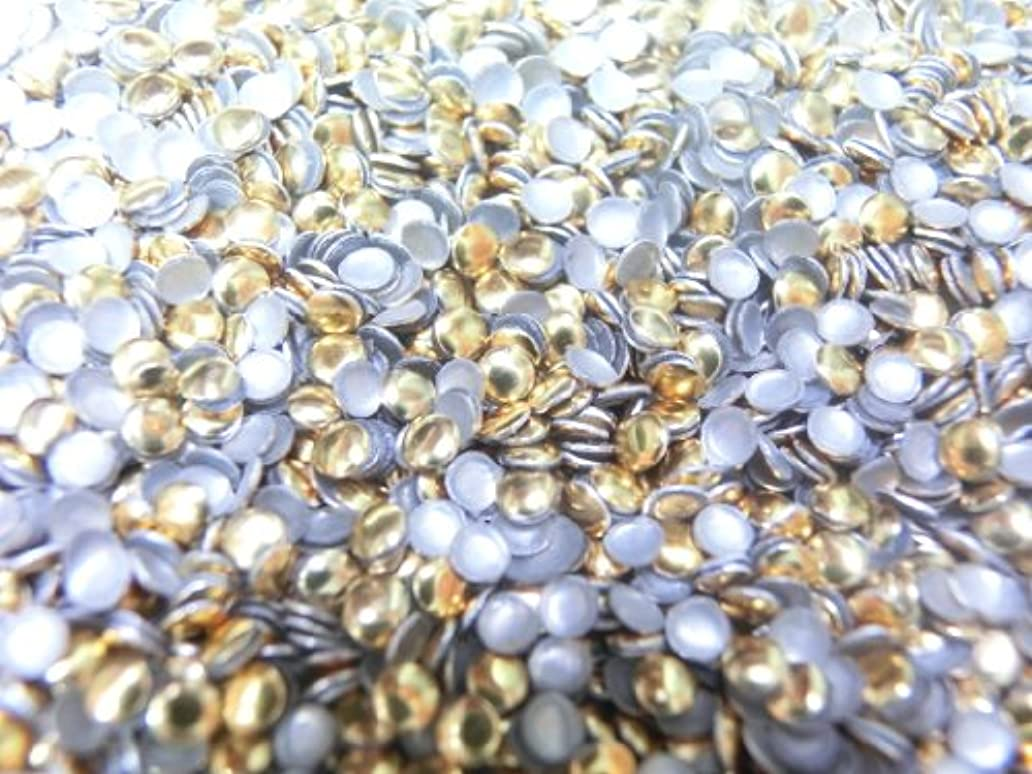 ピュー約束する足首【ラインストーン77】 多種類 スタッズ 約200粒 丸(サークル) ゴールド 2mm