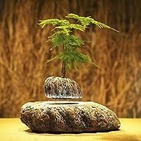 磁気浮上エア盆栽サスペンションフラワーポット鉢植え浮揚浴槽 THINKER1999 (1)