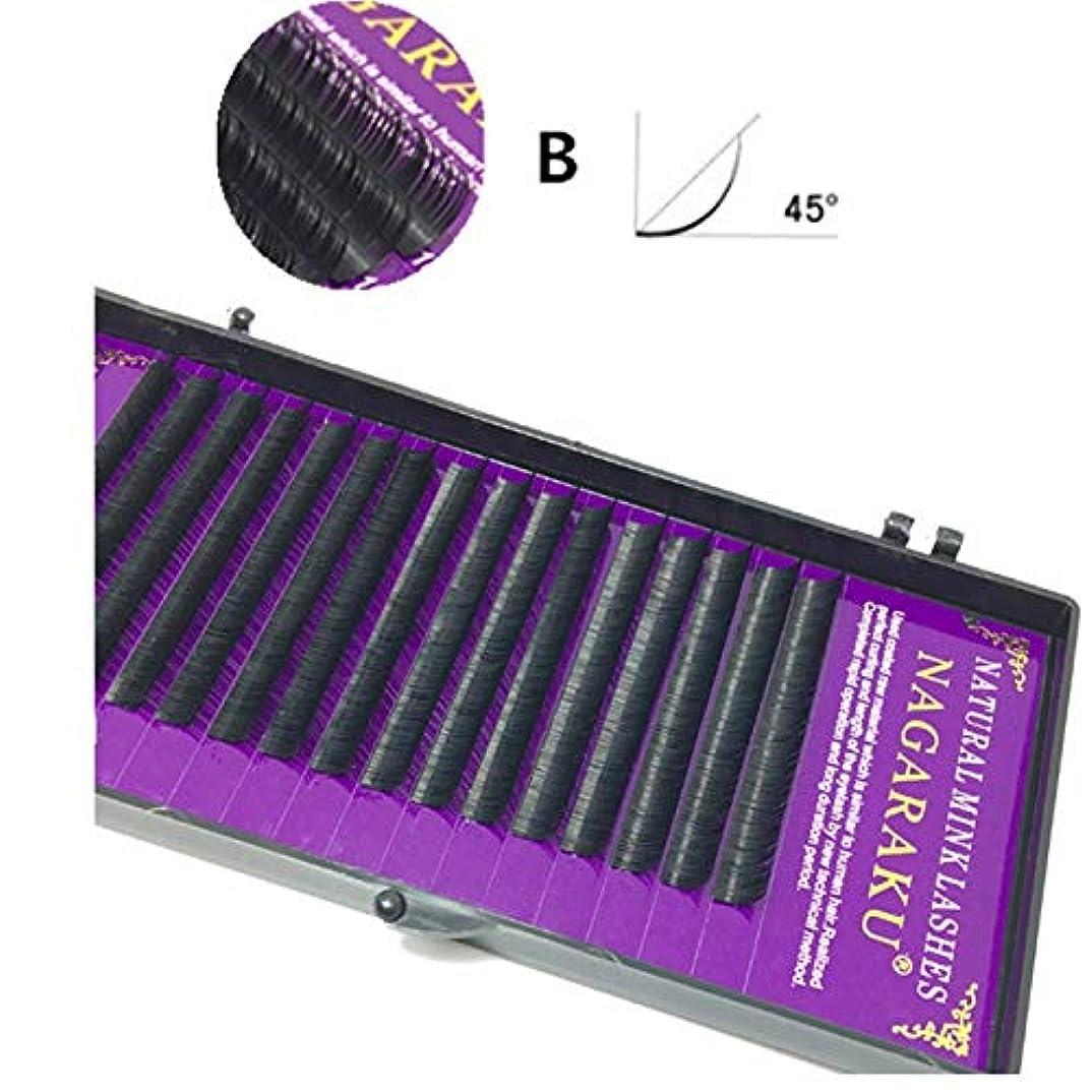 スクラブ起業家株式会社美容アクセサリー 16行ナチュラルメイクまつ毛黒つけまつげアイまつげエクステンションツール、カール:B、厚さ:0.10 mm(8 mm) 写真美容アクセサリー (色 : 10mm)