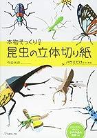 昆虫の立体切り紙