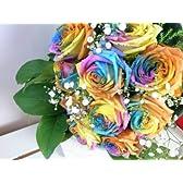 虹色のバラ!お祝いに!ゴージャスなラッピングでお届け レインボーローズの花束 バラの花束 100本 生花