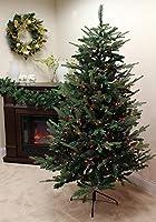 Vickerman R123562 Best Seasonal Decoration Product【クリスマス】【ツリー】 [並行輸入品]
