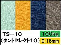 タントセレクト TS-10 100kg Y-6 B4 100枚