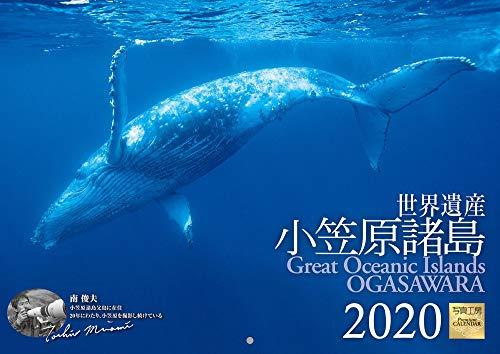 小笠原諸島 2020年 カレンダー 壁掛け SH-2 (使用サイズ420x297mm) 風景