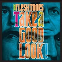 Take a Good Look [12 inch Analog]