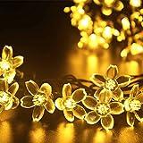 (リーダーテク)lederTEK ソーラー 防雨防水型 電球色 桃花形電飾 イルミネーション LED 6.4m 50球 8点滅モデル クリスマス ライト 新年 飾り付け