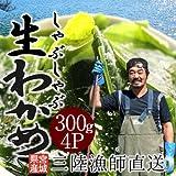 生わかめ しゃぶしゃぶ用1.2kg[300g×4パック]宮城県産天然ワカメ 漁師直送