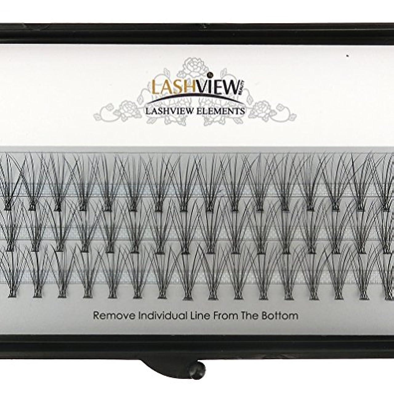 健康的友情にもかかわらずLASHVIEW 高品質まつげエクステフレア セルフ用 超極細素材 太さ0.07mm 12mm Cカール マツエク10本束