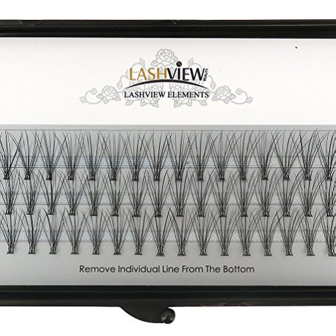 しかしテレビ普通にLASHVIEW 高品質まつげエクステフレア セルフ用 超極細素材 太さ0.07mm 12mm Cカール マツエク10本束