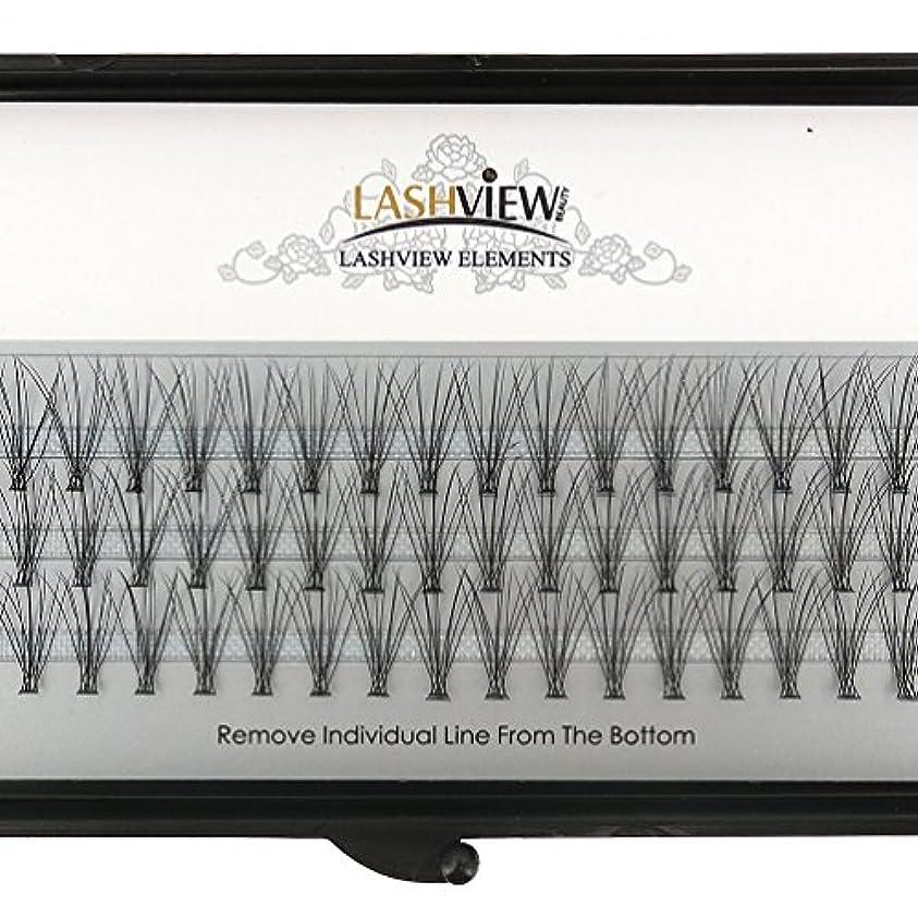 申し立てられたねじれ同行するLASHVIEW 高品質まつげエクステフレア セルフ用 超極細素材 太さ0.07mm 12mm Cカール マツエク10本束