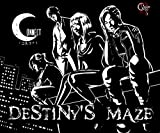 Destiny's Maze(ディスティニーズ・メイズ)