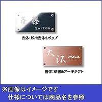 タカショー De-signシリーズ De-sign メタル メタル 12V  DSH-05 ステンレスヘアライン  『表札 サイン 戸建』  赤