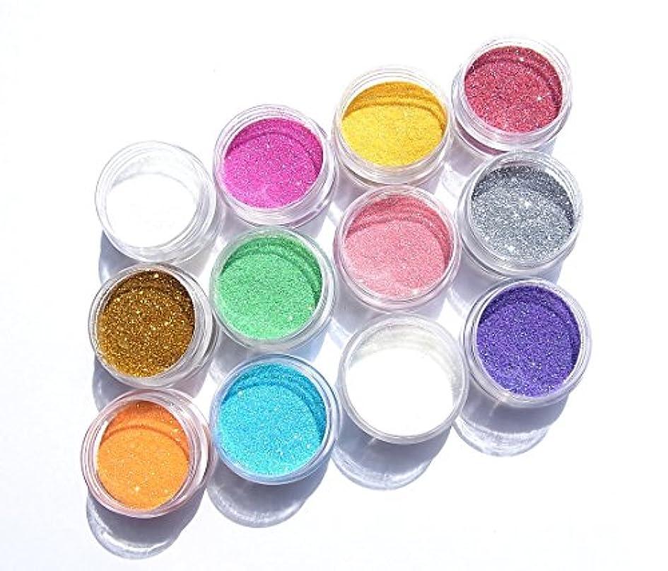 市町村家理論的【jewel】厳選12色 超微粒子ラメパウダー(グリッター)256/1サイズ 各2g入り