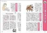 もっと楽しい チワワライフ (犬種別一緒に暮らすためのベーシックマニュアル) 画像