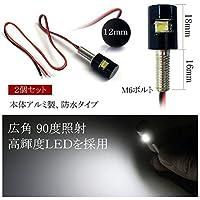 LED ナンバー灯 ボルト型 ジャスティ ジャスティカスタム M900A M910A ナンバーボルト スポットライト ブラックタイプ ホワイト 2個セット