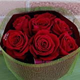 メッセージローズ【Happy Birthday】 花びらメッセージ入り特選赤いバラの花束