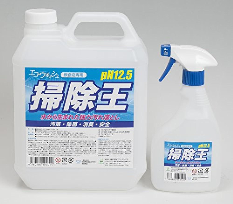 水の強力汚れ落とし/エコ?ウォッシュ[掃除王]/4Lセット/強アルカリ電解水/pH12.5/専用500ml空スプレーボトル付