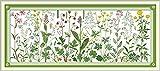 Joy Sunday クロスステッチキット 14CT スタンプ刺繍キット 正確なプリント刺繍 - 草原の上の花 85×36cm