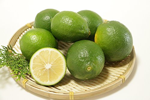 九州産 熊本産 レモン 10キロ 農薬不使用 レモン ノーワックス ビタミンC (レモン, 10キロ)
