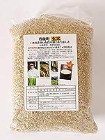 2018年産 北摂豊能産 無農薬米イセヒカリ 玄米2.5㎏ 30年度産