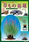 中さんのなかなかイイでしょ 草もの盆栽 (別冊趣味の山野草) 画像