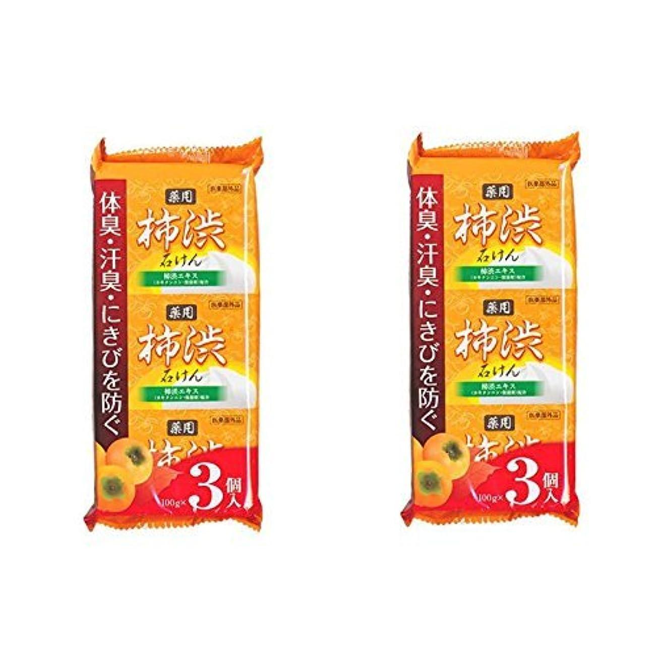 闘争性的定期的柿渋石鹸 100g×6個セット(3個入り×2袋) 柿渋エキス カキタンニン?保湿剤配合