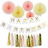 Furuix 誕生日 飾り付け ガーランド パーティー 装飾 飾り セット ペーパーファン タッセル ガーランド Happybirthday バナー スローガン ピンク  クリーム 18点 (白)