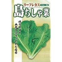 【 沖縄島ちしゃ菜 】 種子 小袋(約3ml)