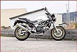 ホンダ VTR250 Aria(アリア)フルエキゾースト ステンレスマフラー Type-S(スラッシュエンド) 515-FE-003-02