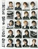RISING STAR GUIDE 2017 (タカラヅカMOOK)