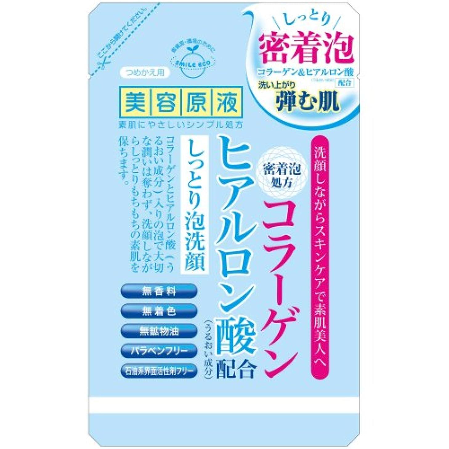 ニューストレイ狭い美容原液 CH うるおい泡洗顔 詰替 (コラーゲン?ヒアルロン酸) 145mL