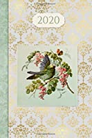 2020 Journal Diary: Vintage Bird   12 Months Week to page 150 pages 6x9 with plenty of Journal space - Contacts - Password - Birthday lists (2020 weekly planner organizer diary journal)