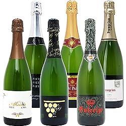 本格シャンパン製法の極上の泡6本セット((W0GX78SE))(750mlx6本ワインセット)