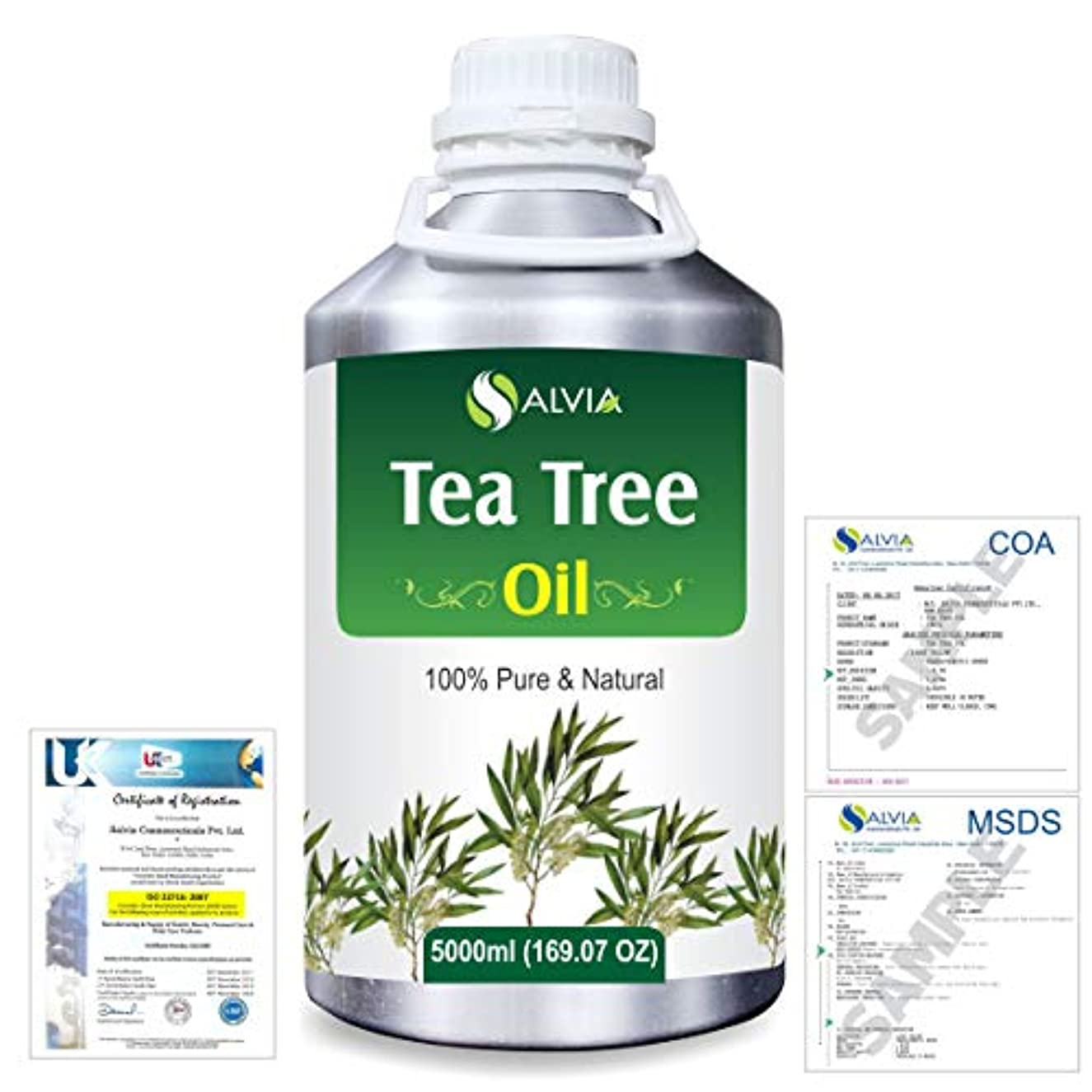 原子炉承認レイアTea Tree (Melaleuca alternifolia) 100% Natural Pure Essential Oil 5000ml/169fl.oz.