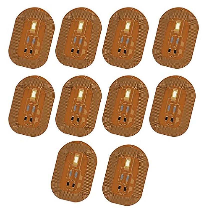 好意糞漏斗Homyl スマートネイル 10枚 ネイルチップ NFCチップ ステッカー LED  フラッシュ ネイルアート ICカード  CE認証