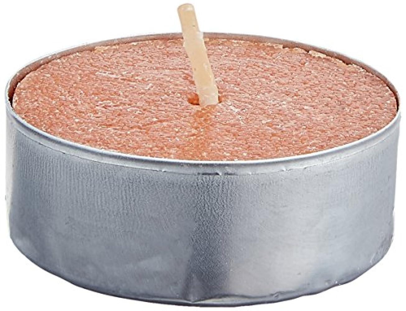 ロケーション恥ずかしい明るいCandle-lite Essentials 25-Pack Scented Tealight Bag, Cinnamon Pecan Swirl by Candlelite
