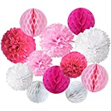 Recosis Paper Pompoms and Honeycomb Balls for Birthday Party Wedding Baby Shower Bridal Shower Festival Decorations - Pink