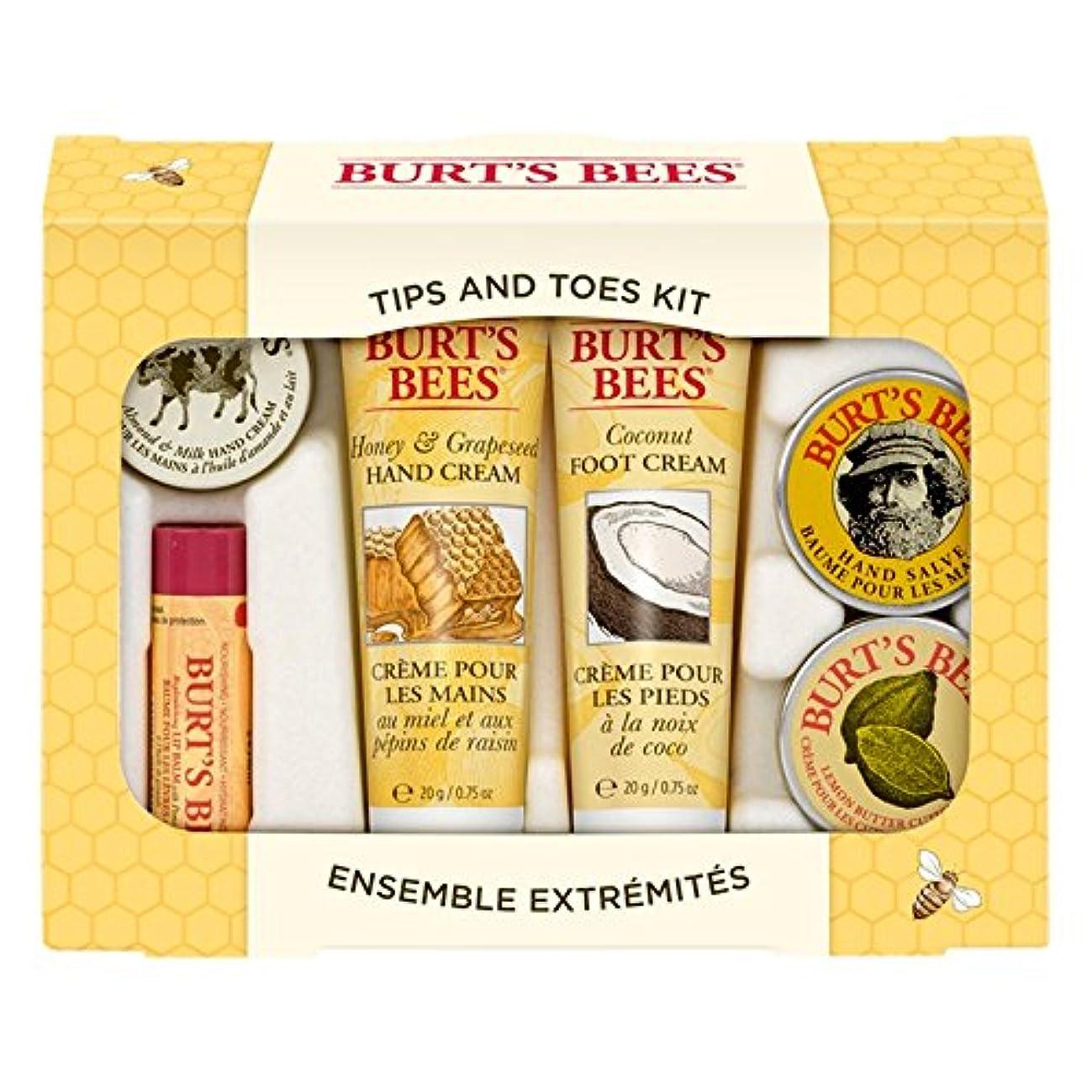 転送娯楽安全バーツビーのヒントとつま先はスターターキットをスキンケア (Burt's Bees) (x6) - Burt's Bees Tips And Toes Skincare Starter Kit (Pack of 6) [...