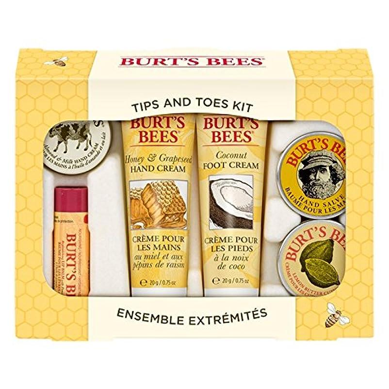 世界記録のギネスブック現金北米バーツビーのヒントとつま先はスターターキットをスキンケア (Burt's Bees) (x6) - Burt's Bees Tips And Toes Skincare Starter Kit (Pack of 6) [...