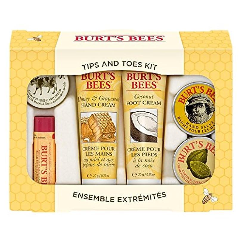 変更枯れる明るいバーツビーのヒントとつま先はスターターキットをスキンケア (Burt's Bees) (x6) - Burt's Bees Tips And Toes Skincare Starter Kit (Pack of 6) [並行輸入品]