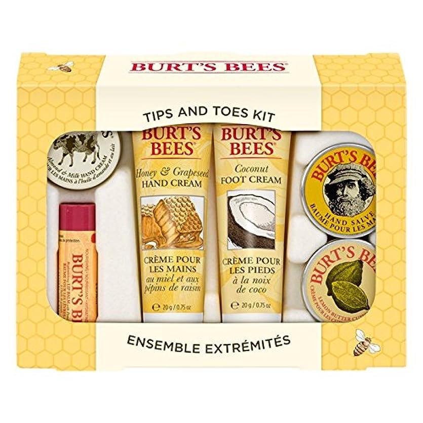 リーフレットまだ重要な役割を果たす、中心的な手段となるバーツビーのヒントとつま先はスターターキットをスキンケア (Burt's Bees) (x6) - Burt's Bees Tips And Toes Skincare Starter Kit (Pack of 6) [...