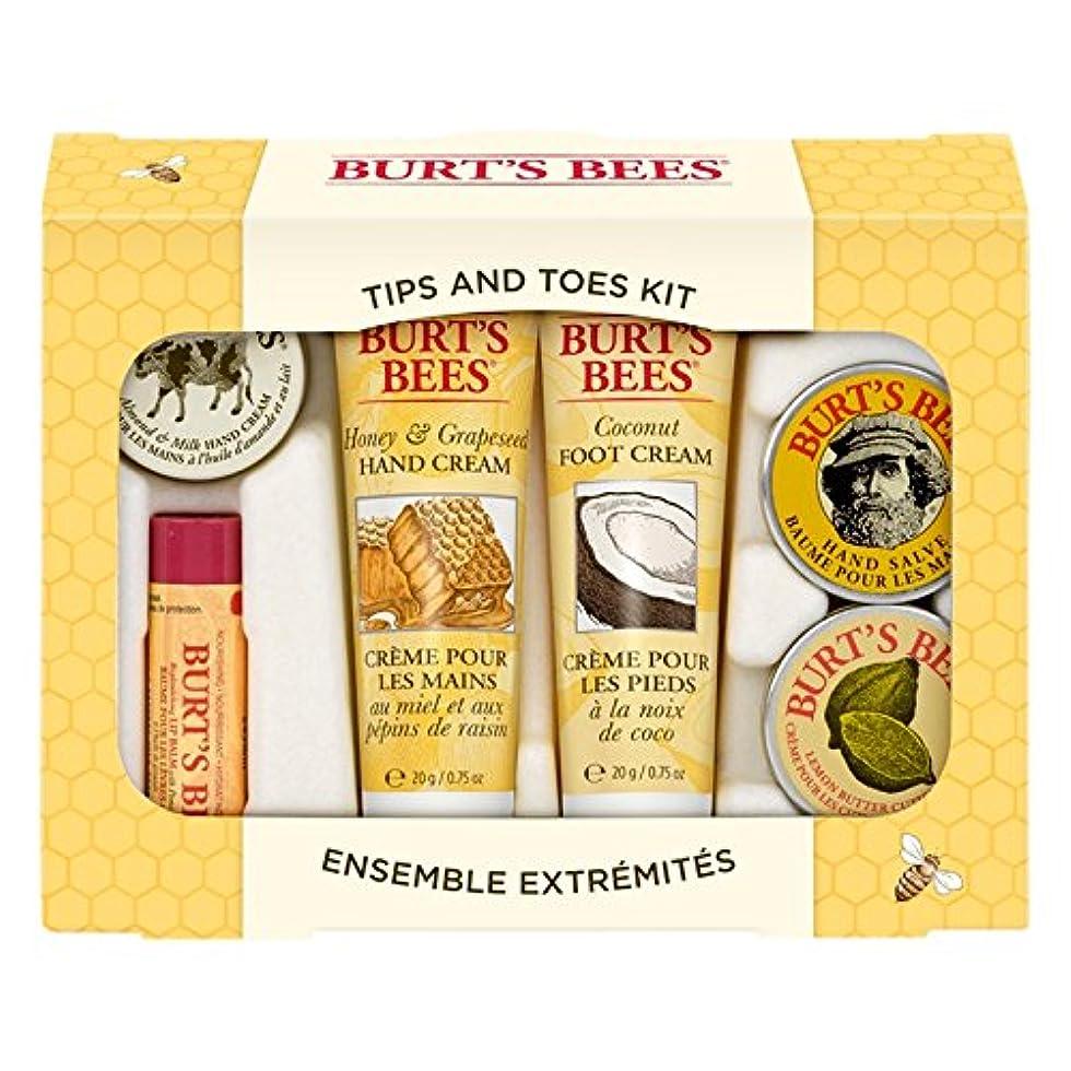 びっくりする輝度履歴書バーツビーのヒントとつま先はスターターキットをスキンケア (Burt's Bees) (x6) - Burt's Bees Tips And Toes Skincare Starter Kit (Pack of 6) [...