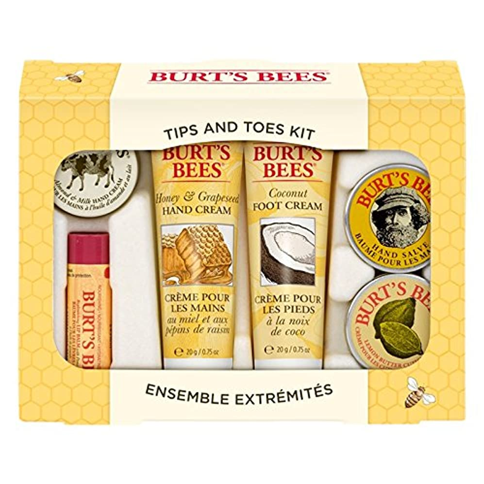 雹ゆり道徳のバーツビーのヒントとつま先はスターターキットをスキンケア (Burt's Bees) (x6) - Burt's Bees Tips And Toes Skincare Starter Kit (Pack of 6) [...