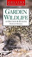 Garden Wildlife of Britain & Europe (Collins Nature Guide)