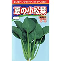 小松菜 種 夏の小松菜 小袋(約20ml)